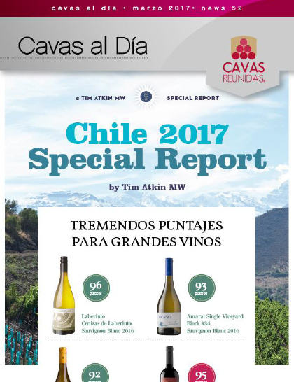 Chile 2017 Special Report
